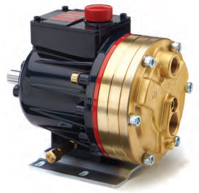 Series D10 Brass Pumps