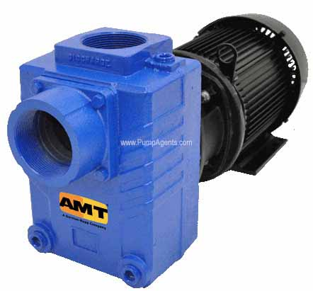 AMT Pump 2876-95