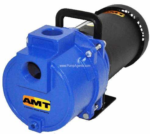 AMT Pump 379D-95