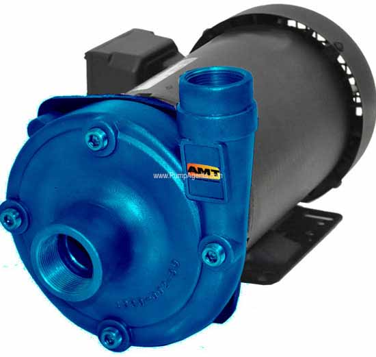 AMT Pump 489D-95