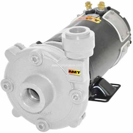 AMT Pump 489G-98