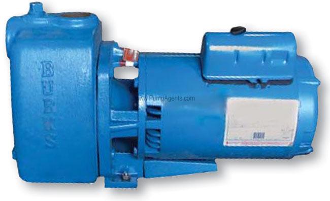 Burks Pump 320WA6-BF