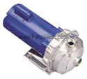 G&L Pump 2ST2C2B4