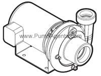 Jacuzzi Pump 1DB1-1/2-T