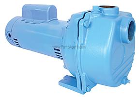 Little Giant Pump LSP-100-C