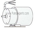 March Pump Part # 0145-0035-1000 - Motor