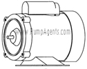March Pump Part # 0151-0039-1000 - Motor
