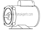 March Pump Part # 0153-0027-1000 - Motor