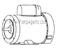 March Pump Part # 0155-0173-1000 - Motor