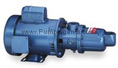 Moyno model # 36750 - Pump and Motor unit