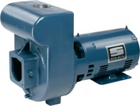 Sta Rite Pump DMH3-171