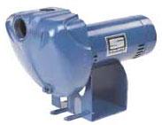 Sta Rite Pump DS3HE3-01