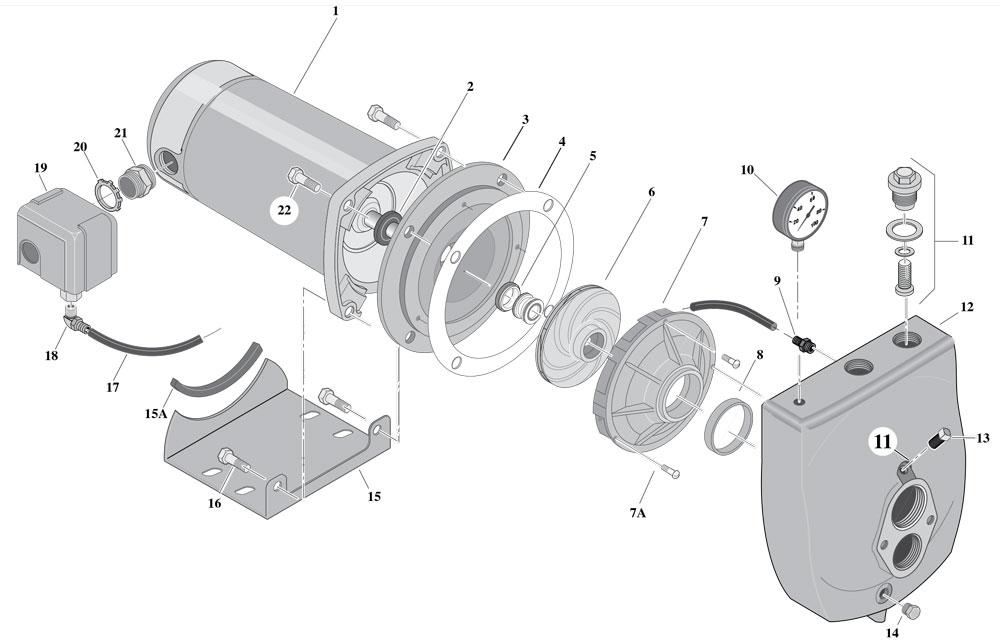 Blowup of SLF-L
