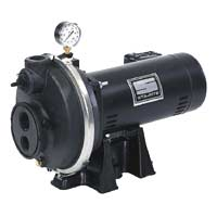 Sta Rite Pump PLF-2L